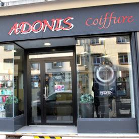 Adonis coiffure