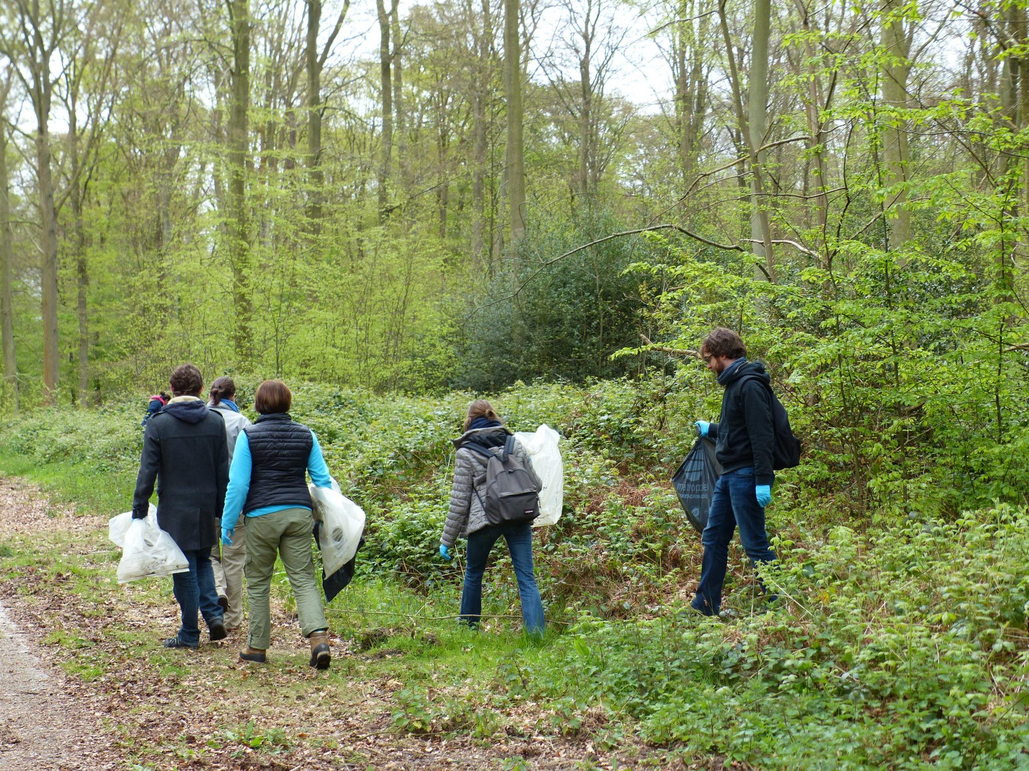 Opération forêts propres